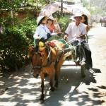 Mekong Delta 4